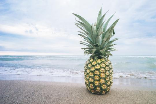 海滩上的菠萝