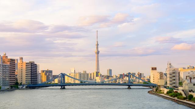 东京的著名建筑——东京塔