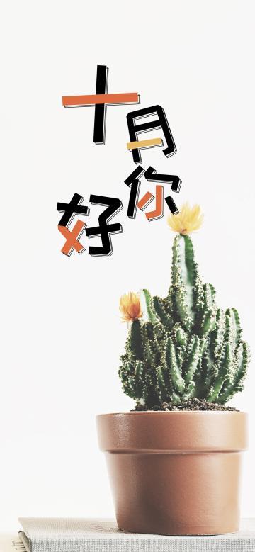 十月你好/小清新仙人掌盆栽