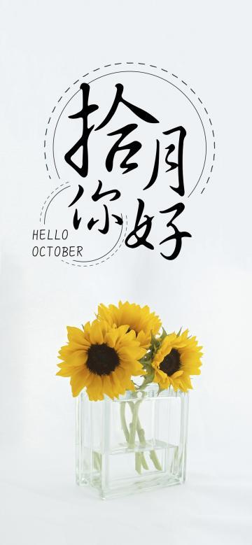 十月你好/小清新向日葵花语
