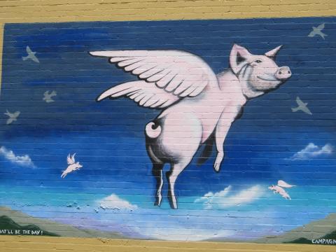长着翅膀的猪